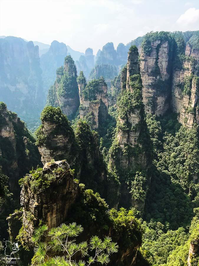 Les montagnes d'Avatar dans le parc de Zhangjiajie dans notre article Parc national de Zhangjiajie en Chine : Petit guide pour visiter ce parc #zhangjiajie #chine #avatar #asie #voyage #trek