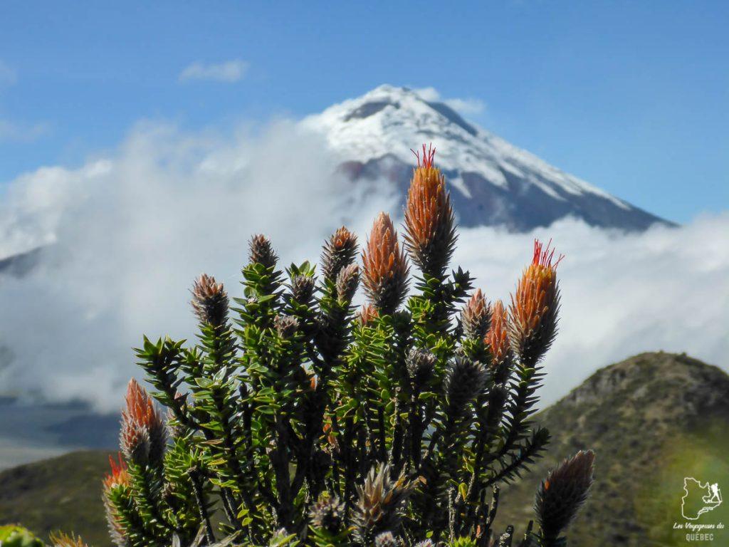 Le volcan Cotopaxi en Équateur dans notre article Où partir seule en tant que femme : 12 destinations pour un voyage en solo #voyage #femme #voyagersolo #equateur