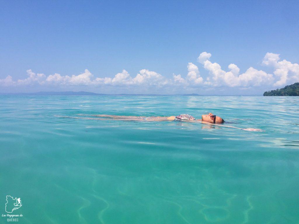 L'île paradisiaque en Inde de Havelock aux Andaman dans notre article Havelock aux îles Andaman en Inde : Évasion parfaite sur une île indienne #havelock #ile #andaman #paradis #inde #voyage