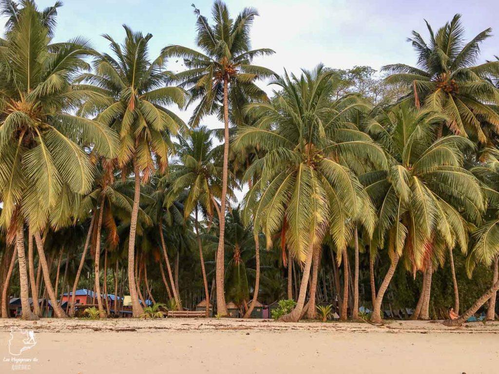 Au Sunrise View Resort sur Havelock dans notre article Havelock aux îles Andaman en Inde : Évasion parfaite sur une île indienne #havelock #ile #andaman #paradis #inde #voyage