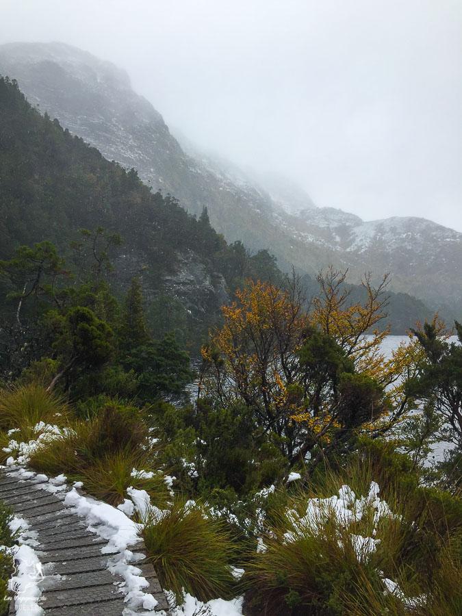 La Cadle Mountain, à faire lors d'un voyage en Tasmanie dans notre article Que faire en Tasmanie : Mon itinéraire de road trip à travers l'île de Tasmanie #tasmanie #australie #ile #voyage #roadtrip