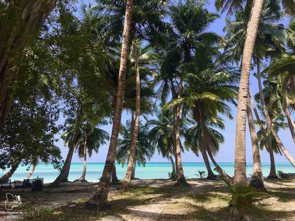 Voyage sur l'île d'Havelock aux îles Andaman dans notre article Havelock aux îles Andaman en Inde : Évasion parfaite sur une île indienne #havelock #ile #andaman #paradis #inde #voyage