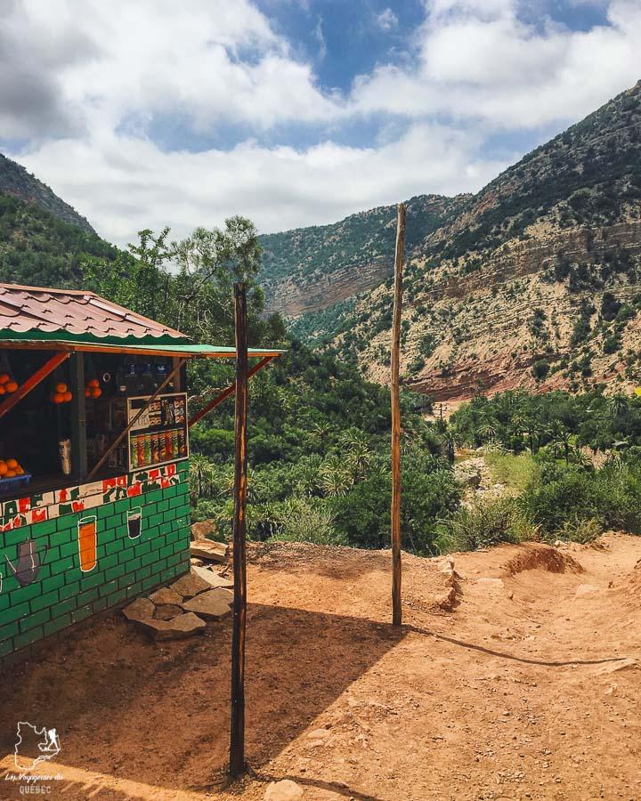 Vallée du Paradis à Tamraght à visiter au Maroc dans notre article Itinéraire au Maroc : Que faire au Maroc et visiter en tant que femme #maroc #itineraire #voyageaufeminin #femme #voyage #Tamraght