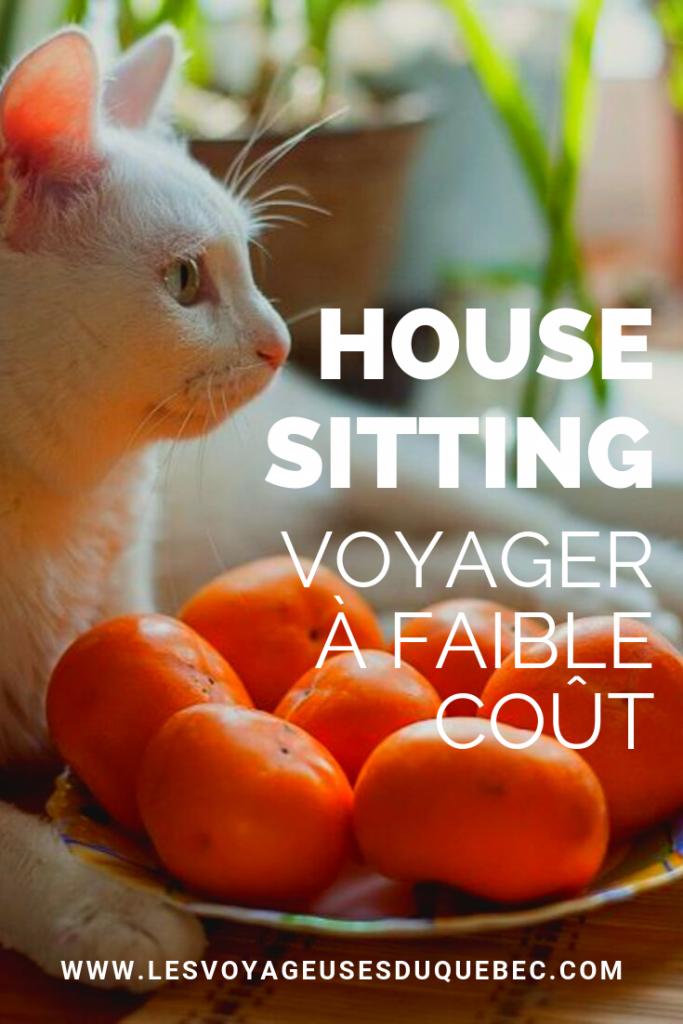 LE HOUSE SITTING : LE GARDIENNAGE DE MAISON POUR VOYAGER À FAIBLE COÛT