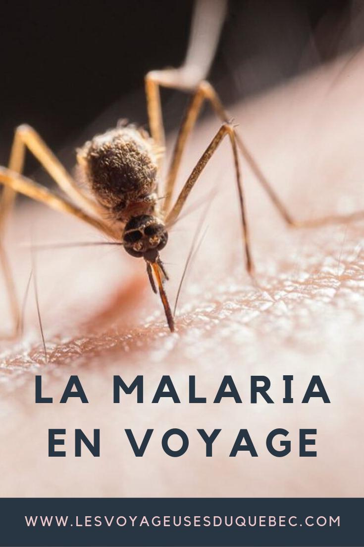 Petit guide sur la malaria en voyage