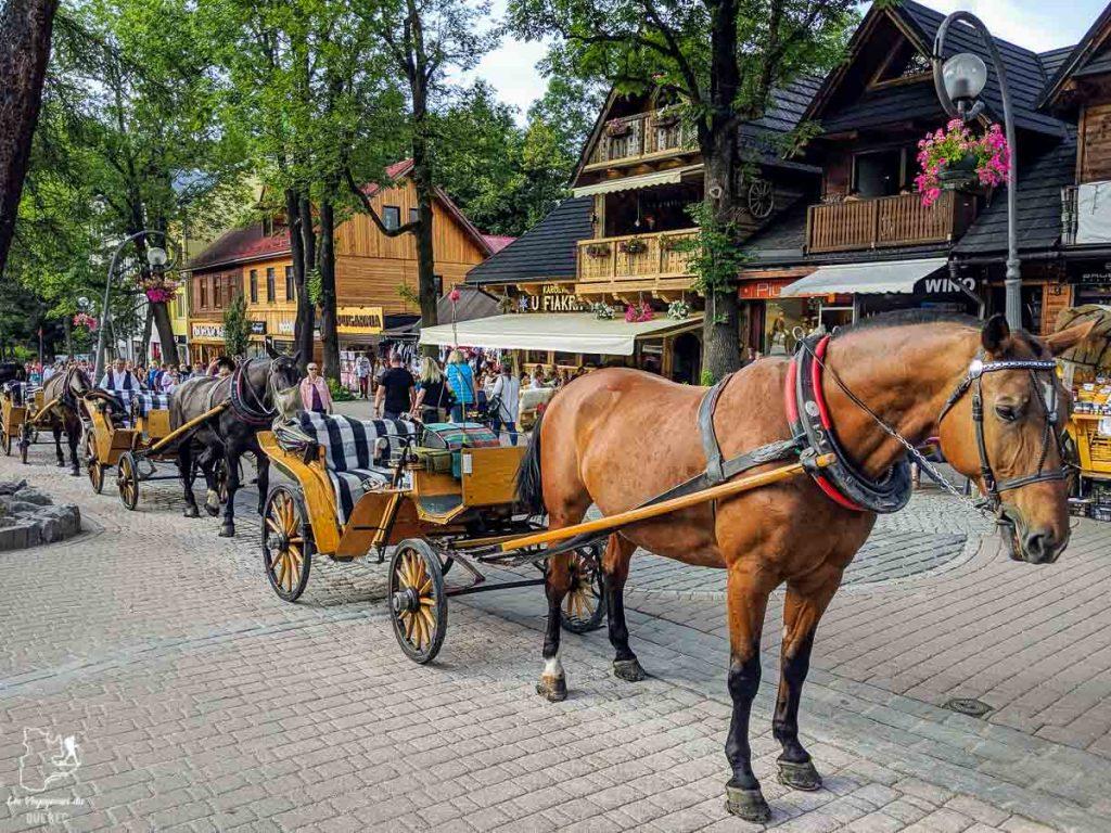 Le village de montagne de Zakopane en Pologne dans notre article Que faire en Pologne et voir : Itinéraire de 2 semaines à visiter la Pologne #pologne #voyage #europe #itineraire #zakopane