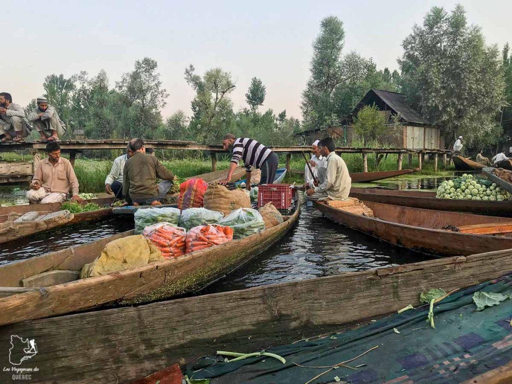 Vivre sur un houseboat dans le Cachemire en Inde du Nord dans notre article Inde du Nord : Itinéraire et conseils pour un voyage dans le Nord de l'Inde #inde #indedunord #norddelinde #asie #voyage #cachemire #himachalpradesh