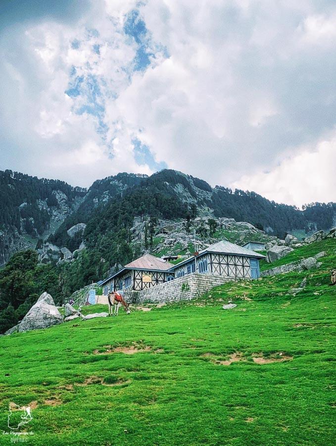 Trek du Triund près de Dharamsala en Inde du Nord dans notre article Inde du Nord : Itinéraire et conseils pour un voyage dans le Nord de l'Inde #inde #indedunord #norddelinde #asie #voyage #cachemire #himachalpradesh