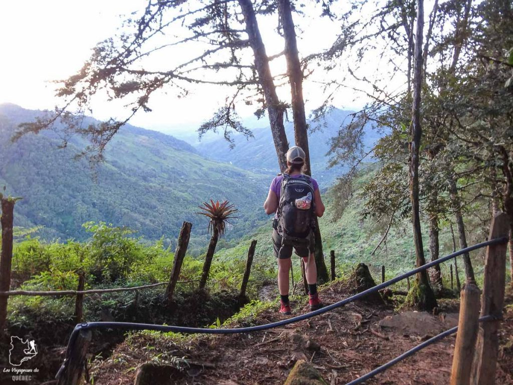 Randonnée au Mont Chirripo au Costa Rica dans notre article Le Cerro Chirripo au Costa Rica : Mon ascension du Mont Chirripo #costarica #ameriquecentrale #voyage #volcan #randonnee #chirripo