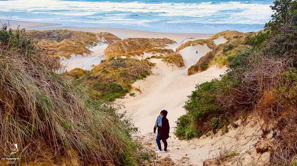 Sandfly Bay visitée lors de mon road trip sur l'île du Sud en Nouvelle-Zélande dans notre article Île du Sud en Nouvelle-Zélande : Incontournables et itinéraire détaillé de mon road trip #nouvellezelande #ile #sud #itineraire #voyage #oceanie #roadtrip