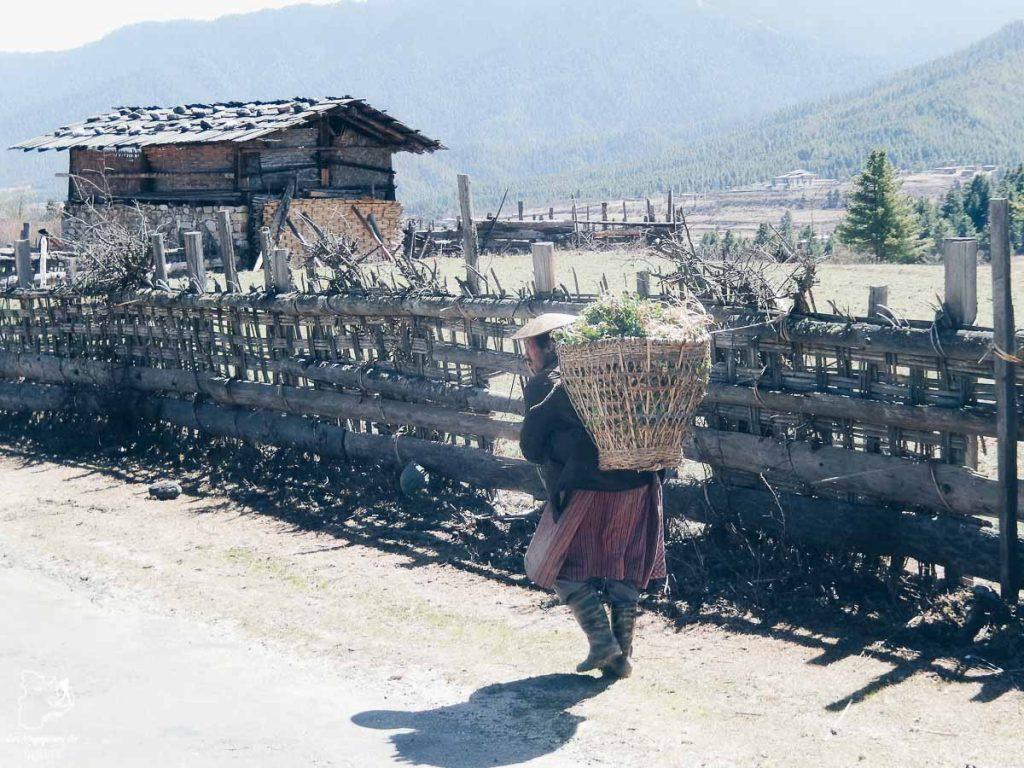 Randonnée dans la campagne de Bumthang dans notre article Visiter le Bhoutan : Voyage dans ce petit royaume enchanteur hors du temps #bhoutan #asie #voyage