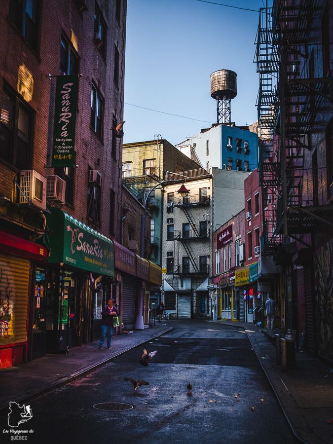 Points de vue de New York sur Doyers Street dans notre article Les meilleurs points de vue de New York et endroits pour photographier la ville #newyork #usa #etatsunis #vue #panoramique #pointsdevue