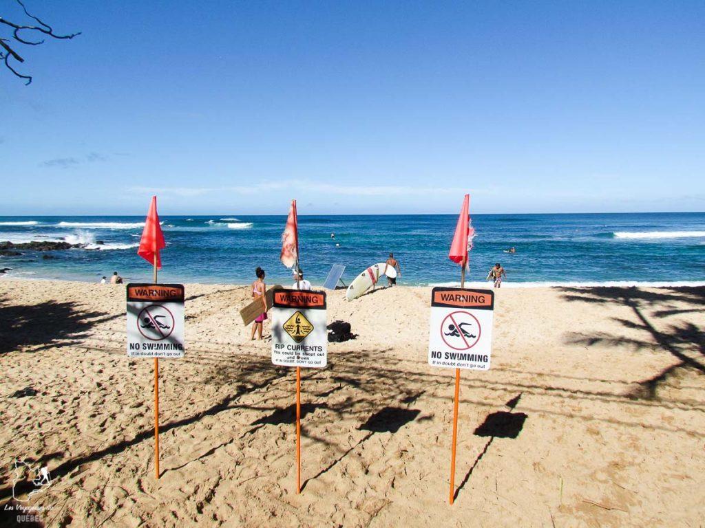 Chuns Reef, spot de surf pour débutant sur le North Shore d'Oahu dans notre article Le surf à Oahu : Mes plus beaux spots de surf sur cette île d'Hawaii #surf #oahu #waikiki #usa #voyage #spotdesurf