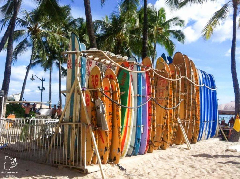 Location de planche de surf à Oahu dans notre article Le surf à Oahu : Mes plus beaux spots de surf sur cette île d'Hawaii #surf #oahu #waikiki #usa #voyage #spotdesurf