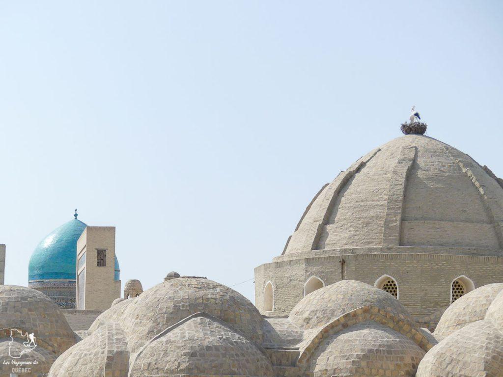 Que voir en Ouzbékistan : Les Médersas de Bukhara dans notre article Visiter l'Ouzbékistan : 7 incontournables à voir lors d'un voyage en Ouzbékistan #ouzbekistan #asiecentrale #routedelasoie #voyage #bukhara #medersas