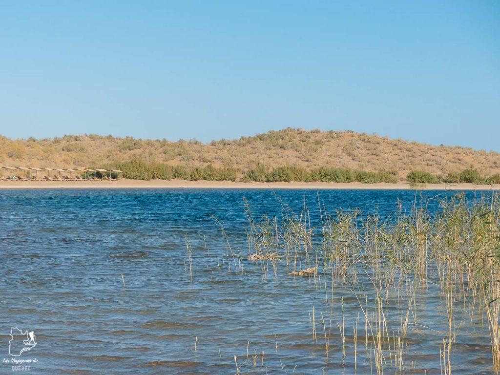 Le Lac Aydar, le plus grand lac à visiter en Ouzbékistan dans notre article Visiter l'Ouzbékistan : 7 incontournables à voir lors d'un voyage en Ouzbékistan #ouzbekistan #asiecentrale #routedelasoie #voyage #lacaydar