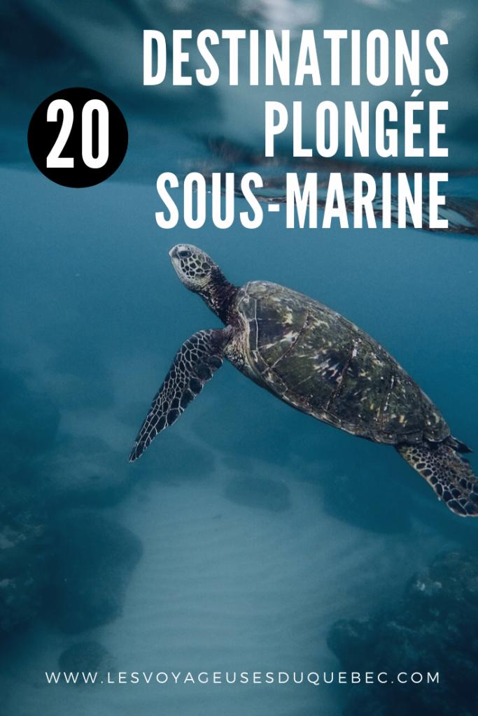 20 destinations plongée sous-marine à travers le monde