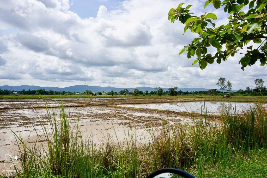 Visiter le nord de la Thaïlande en scooter dans notre article Visiter le nord de la Thaïlande hors des sentiers battus #thailande #nord #horsdessentiersbattus #asie #asiedusudest #voyage