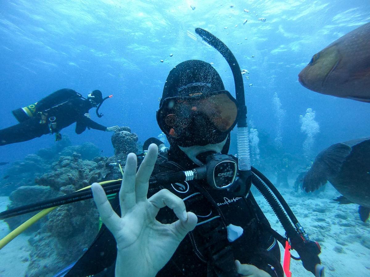 Le Top 30 d'Ultramarina : Les 30 plus beaux sites de plongée du Monde - Voyages plongée Ultramarina