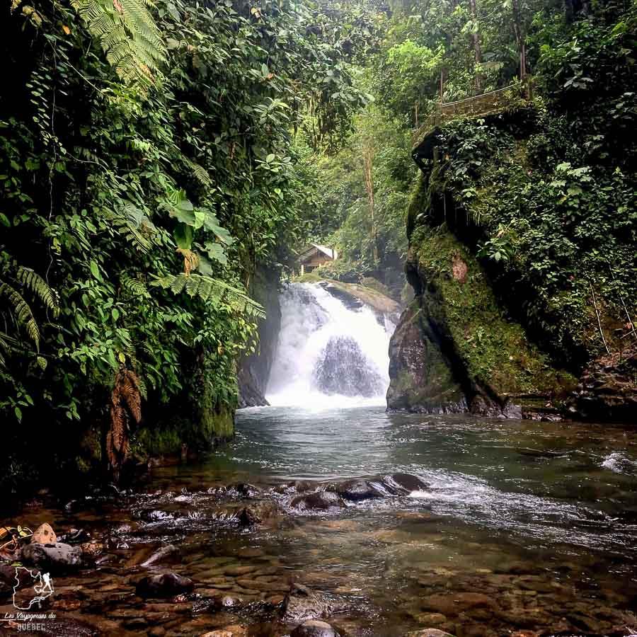 La cascade Nambillo à Mindo en Équateur dans notre article Mindo en Équateur : Que faire et voir dans ce lieu à la faune et la flore unique #equateur #mindo #ameriquedusud #voyage