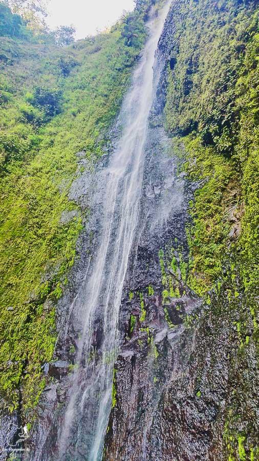 Cascade San Ramon sur Ometepe au Nicaragua dans notre article Ometepe au Nicaragua : Une semaine sur cette île volcanique #ometepe #ileometepe #nicaragua #ameriquecentrale #voyage