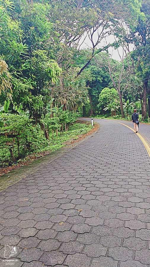 Balade sur l'île d'Ometepe au Nicaragua dans notre article Ometepe au Nicaragua : Une semaine sur cette île volcanique #ometepe #ileometepe #nicaragua #ameriquecentrale #voyage