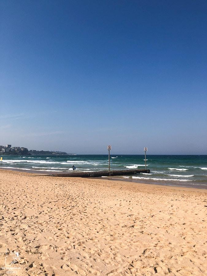 Péninsule de Manly près de Sydney dans l'article Visiter Sydney en Australie : Que faire à Sydney et dans les environs #sydney #australie #voyage #oceanie