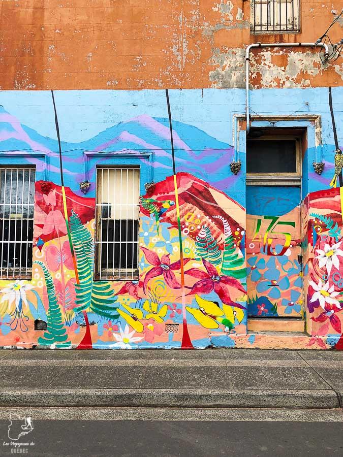 Quartier Newton de Sydney dans l'article Visiter Sydney en Australie : Que faire à Sydney et dans les environs #sydney #australie #voyage #oceanie