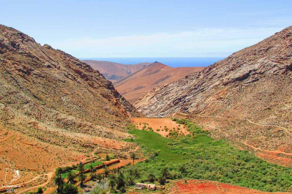 Oasis de Betancouria à Fuerteventura dans notre article Visiter Fuerteventura : petit paradis des îles Canaries en Espagne #Fuerteventura #canaries #espagne #voyage #ile